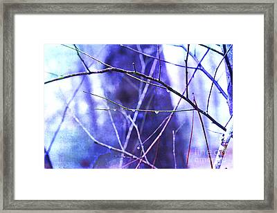 Wintry Framed Print by Judi Bagwell