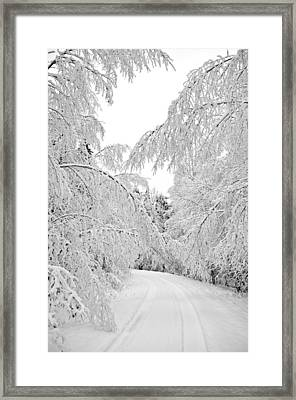 Wintry Road Framed Print by Conny Sjostrom