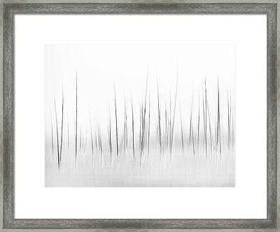 Wintry Scenery In Yellowstone Framed Print