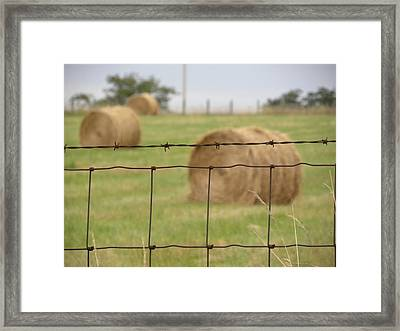 Wire And Hay Framed Print