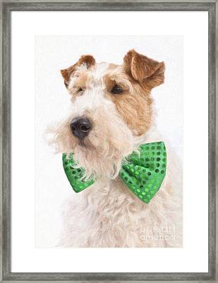 Wire Fox Terrier With Bowtie Framed Print