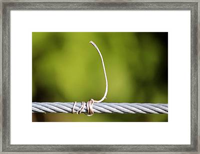 Wire On Wire Framed Print by Cynthia Guinn