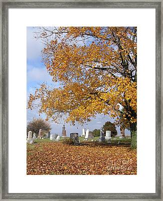 Wisconsin Boneyard 2 Framed Print