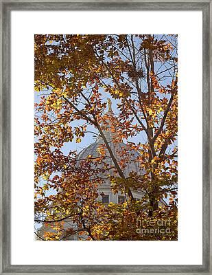 Wisconsin Capitol Framed Print by Steven Ralser