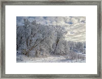 Wisconsin Winter Framed Print by Joan Carroll