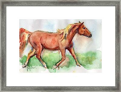 Horse Painted In Watercolor Wisdom Framed Print by Maria's Watercolor
