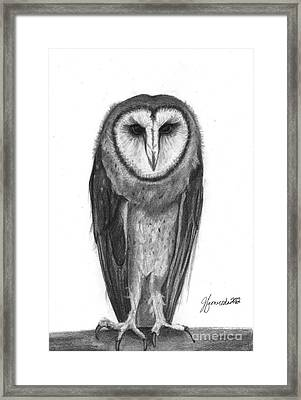 Wisdom With Feathers Framed Print
