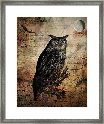 Wise Old Owl Framed Print