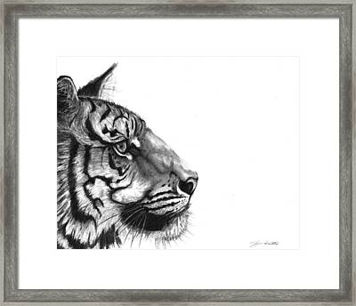 Wise One Framed Print by J Ferwerda