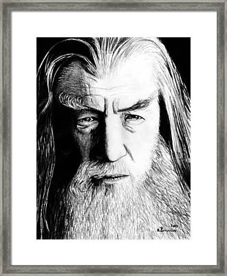 Wise Wizard Framed Print