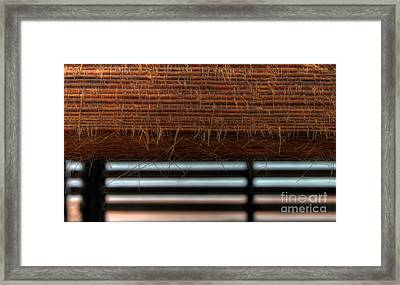 Wise Wood Framed Print
