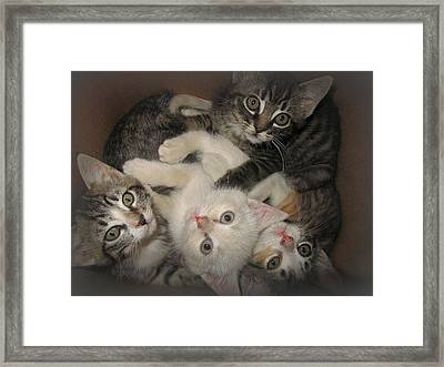Wish I Were Yours Framed Print by Shirley Sirois