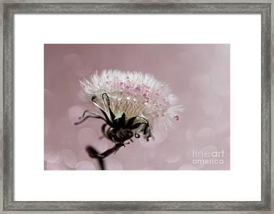 Wish In Pink Framed Print by Krissy Katsimbras