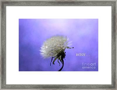 Wish  Framed Print by Krissy Katsimbras
