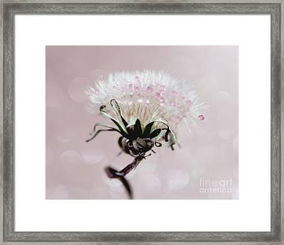 Wish Of Angels Framed Print by Krissy Katsimbras