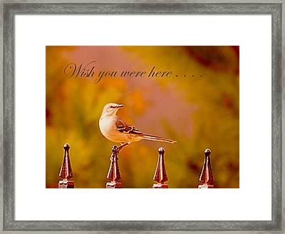 Wish You Were Here.. Framed Print by Angelika Sauer