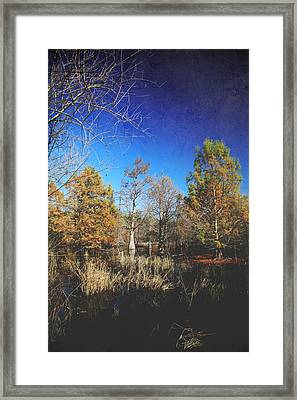 Wish You Would Framed Print
