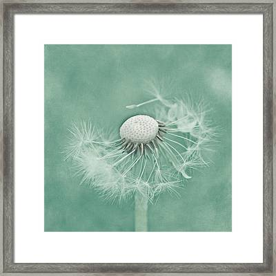 Wishful Framed Print by Kim Hojnacki