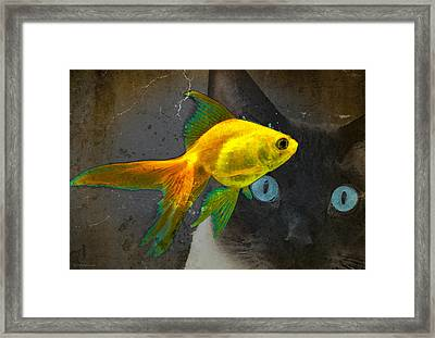 Wishful Thinking Cat Fish Art By Sharon Cummings Framed Print by William Patrick