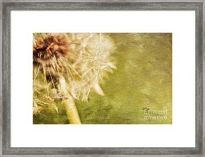 Wishful Thinking Framed Print by Lois Bryan