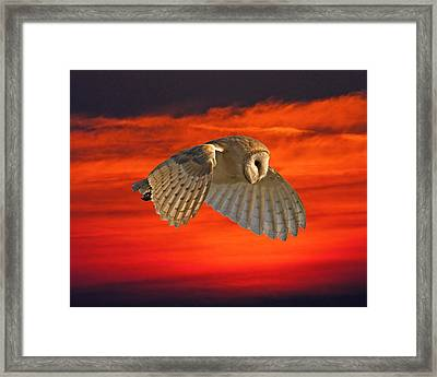 Wishful Thinking Framed Print by Paul Scoullar