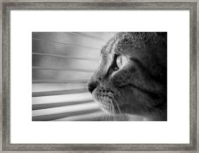 Wishful Thinking Framed Print