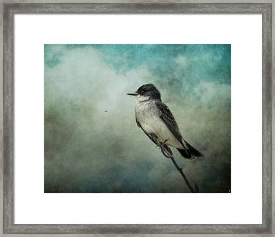 Wishing Framed Print by Jai Johnson
