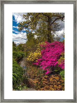 Framed Print featuring the photograph Wisley Garden by Ross Henton