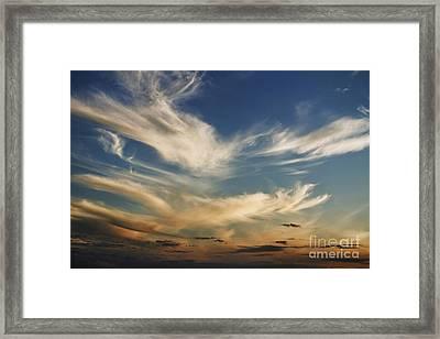 Wisp Framed Print by Andrew Paranavitana