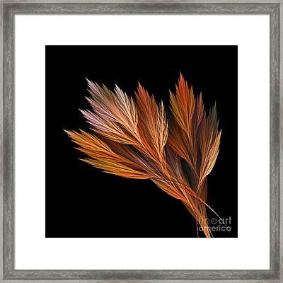 Wispy Tones Of Autumn Framed Print by Kaye Menner