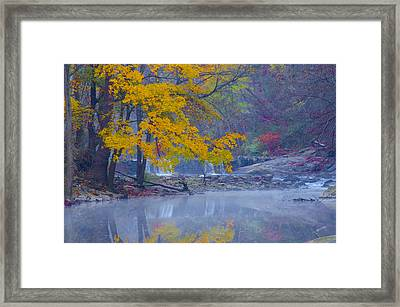 Wissahickon Morning In Autumn Framed Print by Bill Cannon