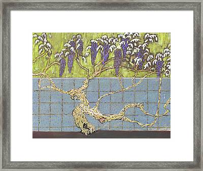 Wisteria Framed Print by Don Perino
