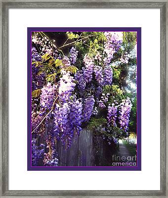 Framed Print featuring the photograph Wisteria Dreaming by Leanne Seymour