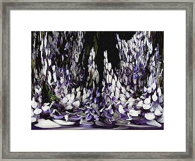 Wisteria Dreams Framed Print by Jodie Marie Anne Richardson Traugott          aka jm-ART