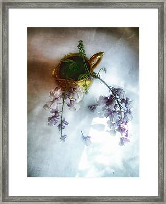 Wisteria In A Gold Pitcher Still Life Framed Print