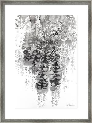 Wisteria Sumie Version Framed Print by Sumiyo Toribe