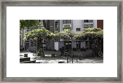 Wisteria Umbrella Arbors Cologne Framed Print by Teresa Mucha