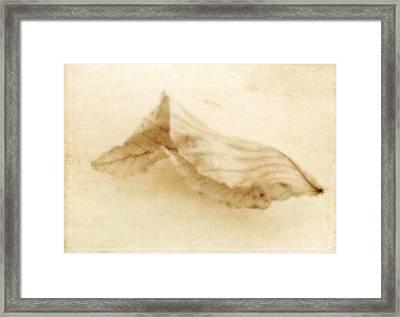 Wistful Framed Print