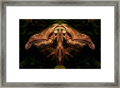 Witch Ballet Framed Print by WB Johnston