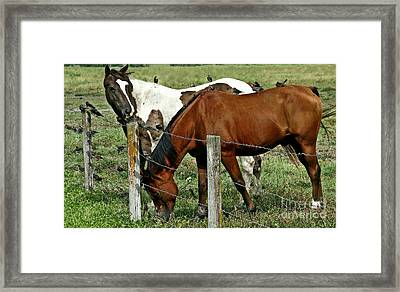 With A Little Help From My Friends Framed Print by Elizabeth Winter
