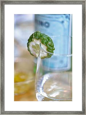 With A Slice Of Lime Please Framed Print by Scott Campbell
