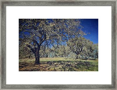 With Every Step You Take Framed Print by Laurie Search