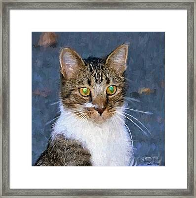 With Eyes On Framed Print