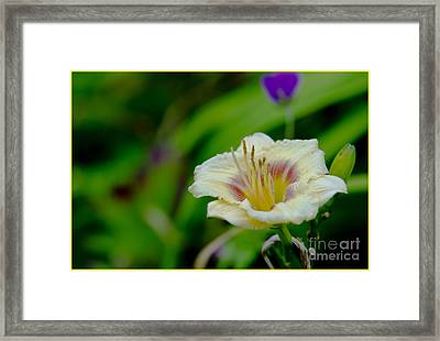 With Friends Framed Print by Timothy J Berndt