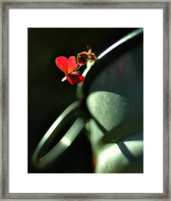 With Love Framed Print by Rebecca Sherman