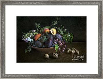 With Plums Framed Print by Elena Nosyreva