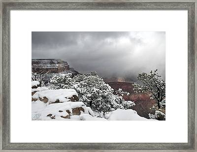 With Snow Framed Print