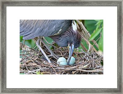 With Tender Care Framed Print