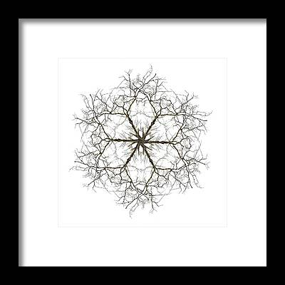 Hexagram Framed Prints