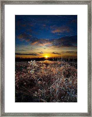 Within Framed Print by Phil Koch